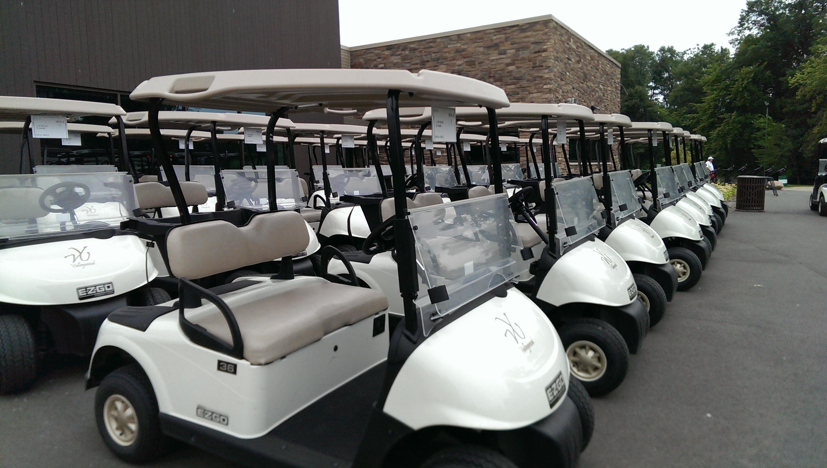 golf carts lined up for a tournament