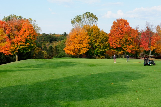 Golfer on golf green with trees in autumn colors in background