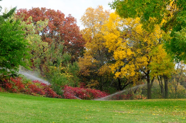 Sprinklers spraying water in front of trees and bushes in autumn colors